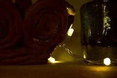 Lampade su un'ustione della ghirlanda Fotografie Stock Libere da Diritti