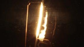 Lampadina bassa della luce a incandescenza di watt stock footage