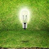 Lampadina brillante nel fondo della stanza dell'erba, idea di eco Fotografia Stock Libera da Diritti