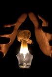 Lampadina Burning Fotografia Stock Libera da Diritti