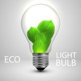 Lampadina con il concetto di ecologia delle foglie Immagine Stock