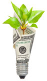 Lampadina con il dollaro ed il germoglio verde Fotografia Stock