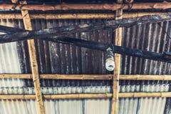 Lampadina d'attaccatura sul soffitto di legno Fotografia Stock