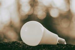 Lampadina del LED su suolo per energia ed il concetto di risparmio dell'ambiente Fotografie Stock Libere da Diritti