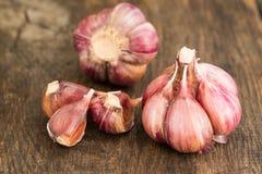 Lampadina dell'aglio e chiodi di garofano di aglio a bordo Fotografie Stock