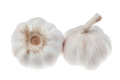 Lampadina dell'aglio isolata su fondo bianco Fotografia Stock Libera da Diritti
