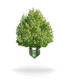 Lampadina dell'energia rinnovabile fotografia stock