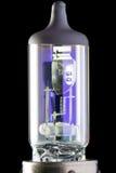 Lampadina della lampada allo xeno Fotografia Stock Libera da Diritti