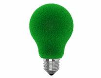 Lampadina di Eco con erba verde Immagine Stock