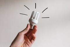 Lampadina di eco sicuro di energia Fotografia Stock