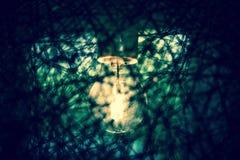 Lampadina di lerciume nei colori nebbiosi fotografia stock libera da diritti