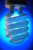 Lampadina di risparmio energetico fotografia stock libera da diritti