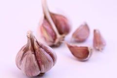 Lampadina e chiodi di garofano dell'aglio Fotografia Stock