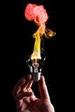Lampadina e fuoco Fotografie Stock