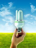 Lampadina economizzatrice d'energia Fotografia Stock Libera da Diritti
