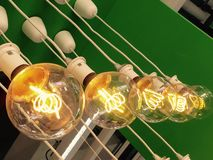 Lampadina economizzatrice d'energia Fotografie Stock