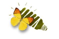 Lampadina economizzatrice d'energia con la farfalla Immagini Stock Libere da Diritti