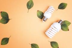 Lampadina economizzatrice d'energia con le foglie verdi Disposizione piana, vista superiore, immagine stock libera da diritti