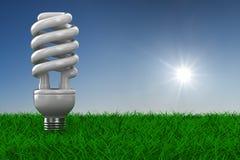 Lampadina economizzatrice d'energia su erba Fotografia Stock