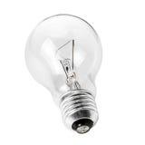 Lampadina elettrica Immagini Stock