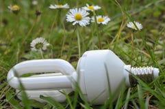Lampadina elettrica del consumo basso nell'erba immagini stock