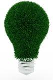 Lampadina fatta di erba verde Fotografia Stock Libera da Diritti