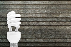 Lampadina fluorescente compatta Fotografie Stock Libere da Diritti