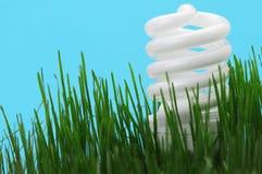 Lampadina fluorescente compatta economizzatrice d'energia Immagini Stock