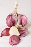 Lampadina fresca dell'aglio con i chiodi di garofano sciolti Immagini Stock