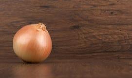 Lampadina fresca della cipolla Fotografia Stock