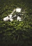 Lampadina su verde Immagine Stock