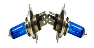 Lampadine dell'alogeno blu per le automobili Immagine Stock