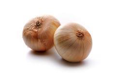 Lampadine della verdura della cipolla dell'oro Immagini Stock Libere da Diritti