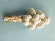Lampadine di aglio ambientali Fotografia Stock Libera da Diritti