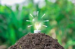 Lampadine di concetto dell'ambiente ecologico sulla terra e sulla piantatura fotografia stock