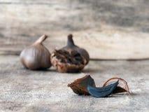 Lampadine e chiodi di garofano neri fermentati dell'aglio Fotografia Stock