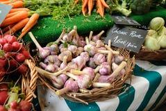 Lampadine fresche dell'aglio da vendere Immagini Stock Libere da Diritti