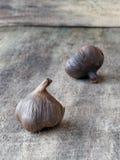 Lampadine nere fermentate dell'aglio Immagine Stock