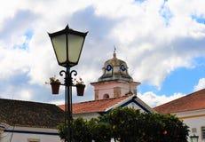 Lampan med blommorna och det kyrkliga tornet - förskoningkyrka royaltyfri bild