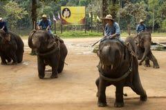 LAMPANG,泰国- 2018年12月7日:游人泰国,Mahout 免版税库存照片