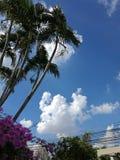 Lampang. Sky at lampang royalty free stock photo