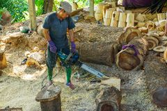 Worker cutting wood to make furniture royalty free stock images