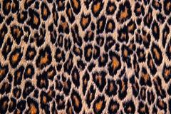 Lampart, jaguar, ryś skóra Obrazy Royalty Free