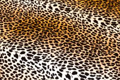 Lampart skóra Obrazy Royalty Free