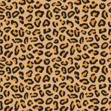 lamparta bezszwowy deseniowy Lampartów punkty Moda geparda druk Popularna tekstura royalty ilustracja