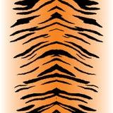 lampasów tygrysa wektor Obrazy Royalty Free