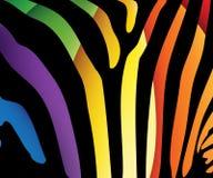 lampas deseniowa zebra Zdjęcia Stock