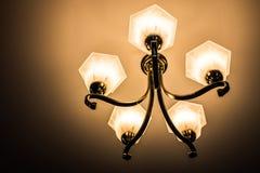 Lampboeket Stock Foto