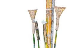 Lampdesign från bambu. Royaltyfria Bilder