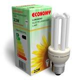 Lampe à énergie réduite avec le module illustration stock